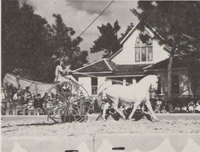 ringling_circus_performances_-_late_1930's
