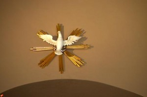 Dove Displayed in Church