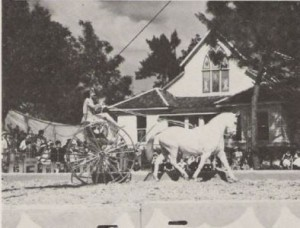 Ringling Circus Performances late 1930'sb